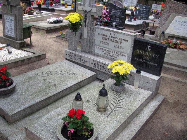 Alfons Ostojski - Cmentarz Witomiński