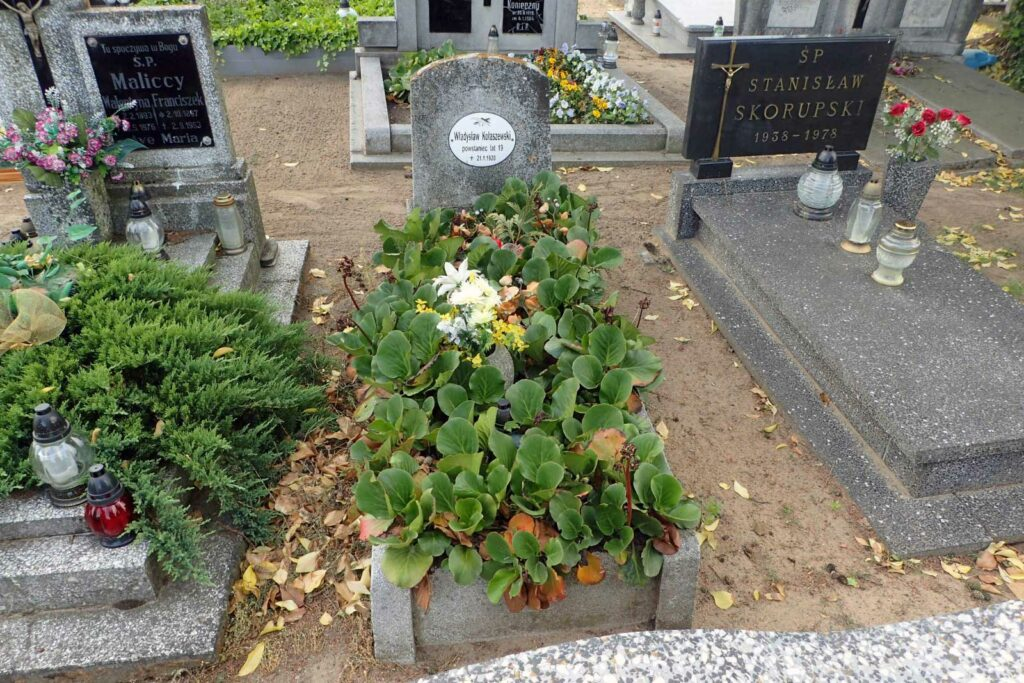 Władysław Kolaszewski - cmentarz w Sierakowie Wielkopolskim