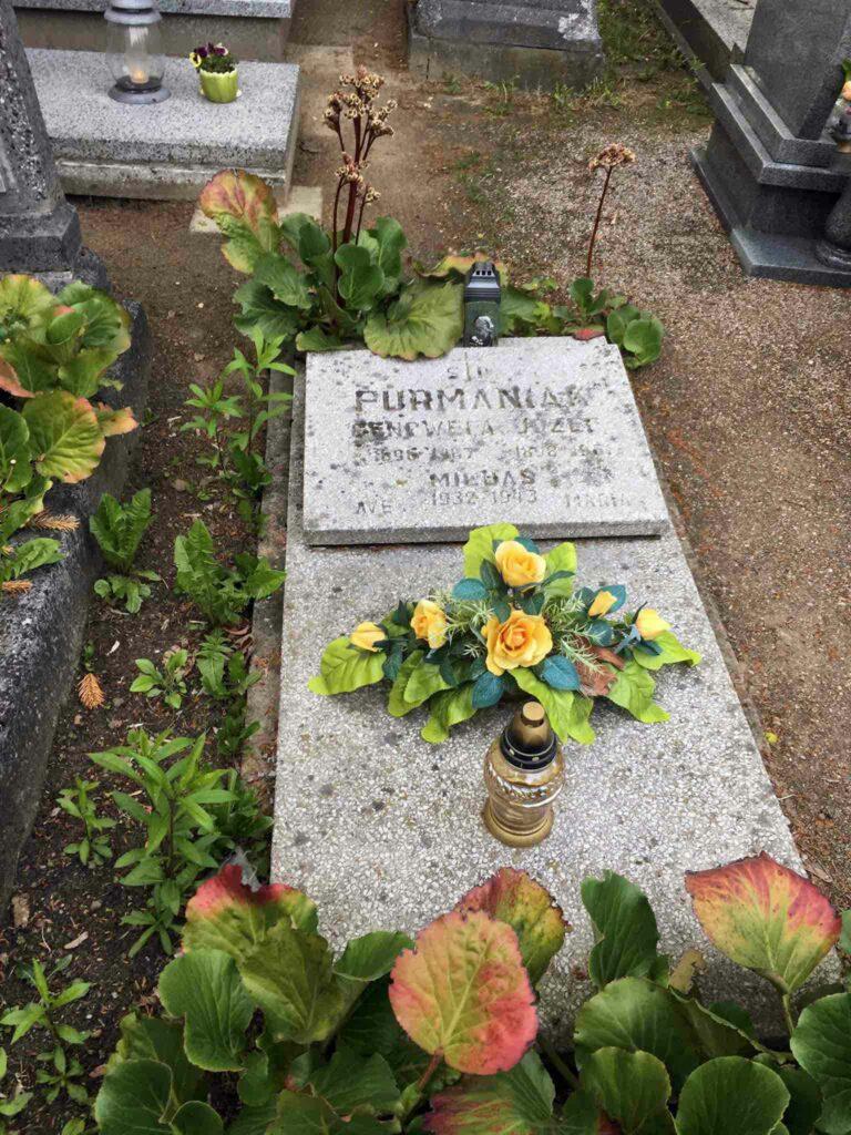 Józef Furmaniak - cmentarz górczyński w Poznaniu