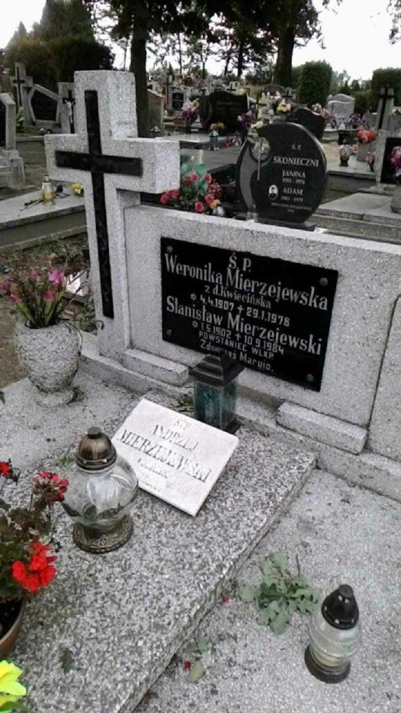 Stanisław Mierzejewski - cmentarz w Wierzenicy